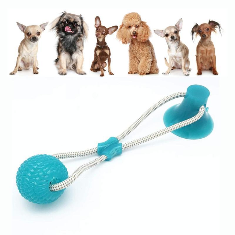 Molares para mascotas multifuncionales juguete mordedura de perro pelota limpieza de dientes con ventosa cachorros juguetes Y200330