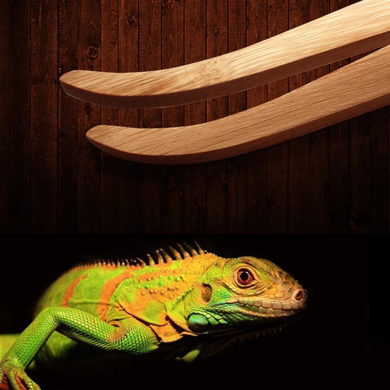 1PC Reptil Feed-Tweezer Reptile Bambus Pinzette Clips Frosch Spinne Werkzeug für Terrarium Litter Reinigung und Lebensmittel Feeding