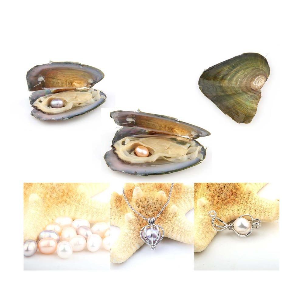 Ostriche Pearl con riso 7-8 mm Amore reale perla d'acqua dolce e di Nacklace Set (Catena 55 cm)