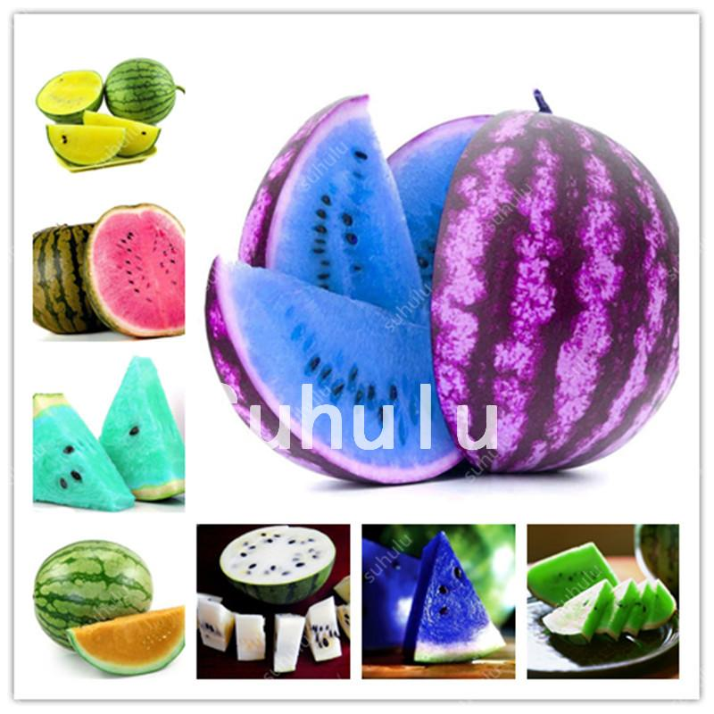 50 Pcs Melon Plants Mixed Watermelon seeds Bonsai Sweet Fruit Plant Variety Fresh Cool Summer Bonsai Plant For Home Garden Rare Edible
