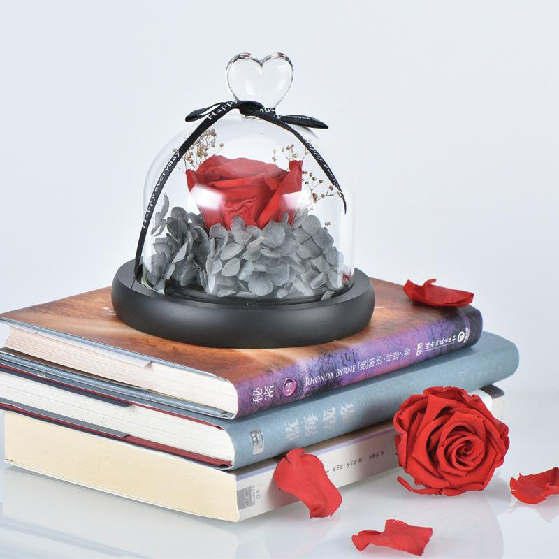 Creative Presents Eternal Exclusive Rose In Glass Dome The Beauty And Beast Rose Romantic Valentine'S Day Gifts Birth T191111