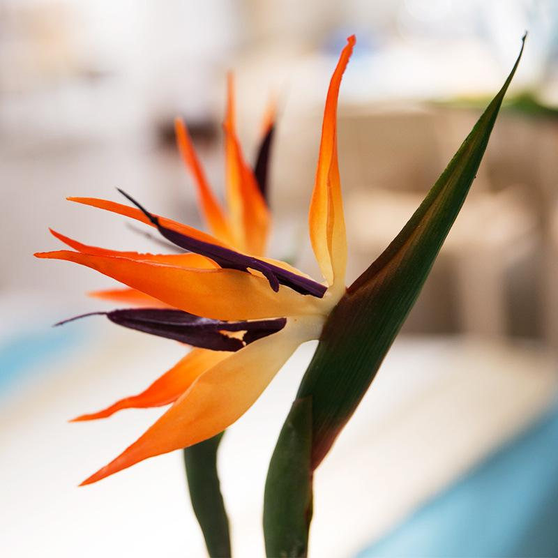 Artificial Flowers Paradise Bird Strelitzia Fake Flower Home Decorations for Wedding Party Hotel Office High Quality Total height 80cm