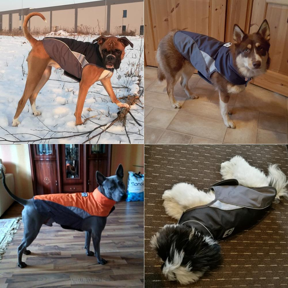 Roupa Outono cão de estimação para cães Inverno grossa jaqueta impermeável Noite refletor seguro Vest para Menor Médio Lager All Dogs XS-3XL