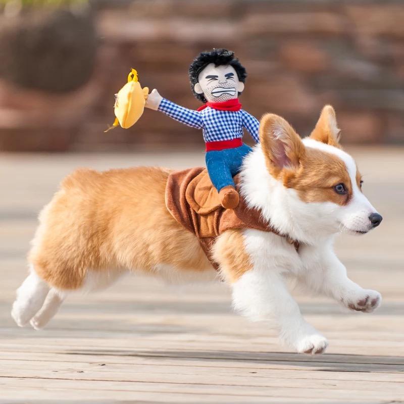 vêtements pour chiens mignons et drôles avec peu de gens sur le dos, le chien de la poupée chevalier vêtements, sac d'argent chien animal vestes brun
