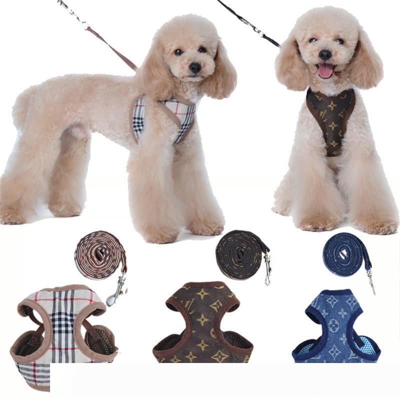 Carta diseñadores arneses del animal doméstico del bordado de la manera linda del perrito de peluche pequeño perro Suministros para mascotas cuello de la correa de la personalidad