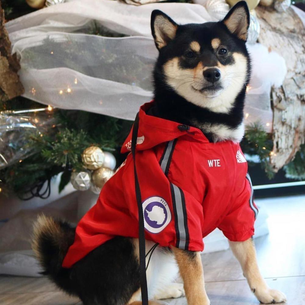 Dog Clothes Jackets Outdoor Windproof Shirt Dog Windbreaker Sport Retro Dog Hoodies Puppy Pet Clothes Bulldog Ropa Perro Pugs T191104
