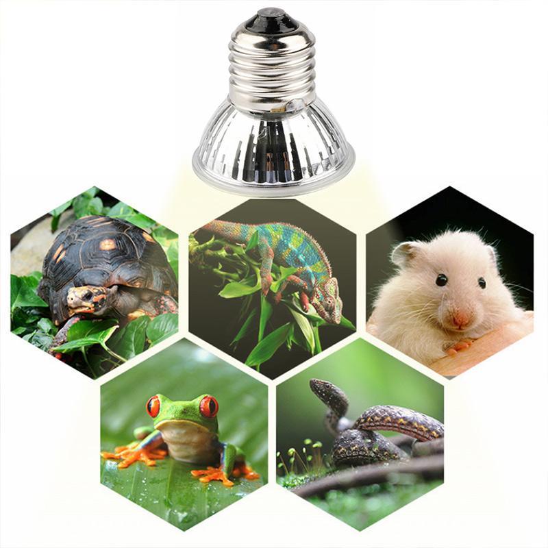 Brelang 25/50 / 75W UVA + UVB 3.0 lampada rettile lampadina Turtle Bulb Bulb Bulbs Lampadine UV Lampadine di riscaldamento Amphibians Lizards Regolatore di temperatura