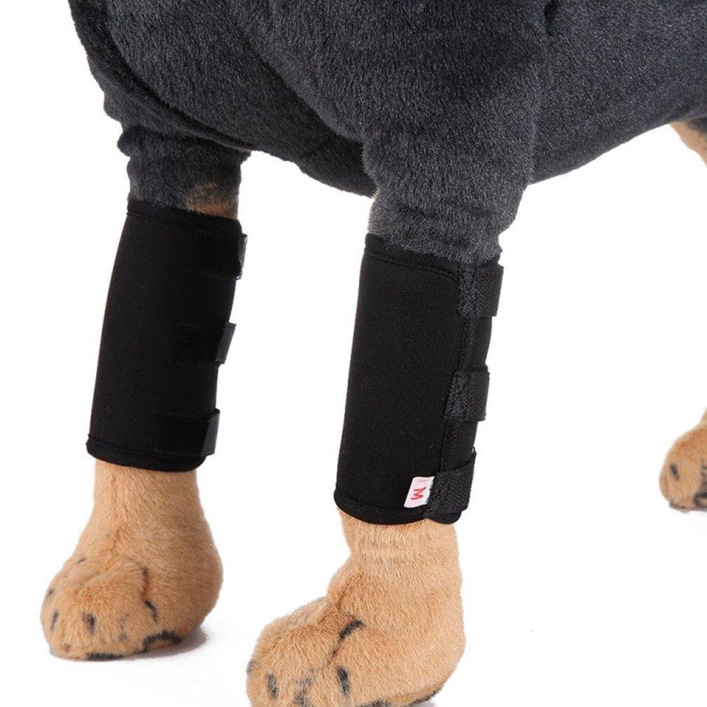 Pet Supplies Knee Pads Garde jambes pour chiens pour animaux protecteurs blessures de chirurgie pour chiens Housse de protection Conçu Polonais rideaux Délicieusement
