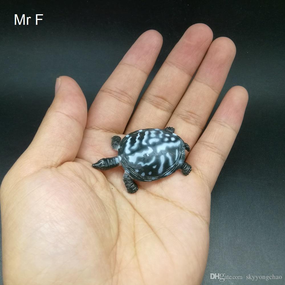 Niño regalo 5 cm Tortuga broma choque broma modelo plástico aprendizaje ciencias descubrimiento juguete juego
