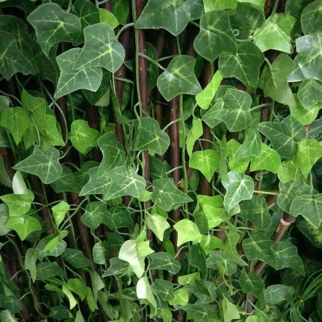 ارتفاع مصطنع جدار اللبلاب الأوراق الخضراء الحلوة اللبلاب نبات بوسطن فن زخرفة كبيرة بوسطن اللبلاب كرمة أوراق الشجر الخضراء للمهرجان