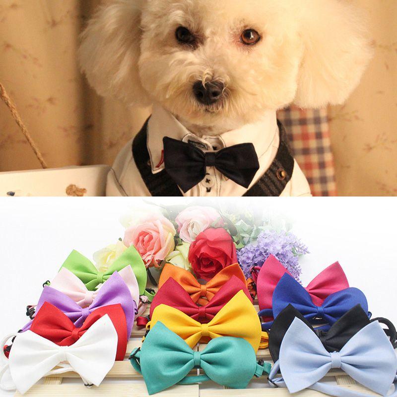 Собака кошка шея галстук собака одеваются галстук-бабочка прекрасный питомец взять фото принадлежности уход за домашними животными галстук головной убор цветок регулируемые галстуки BH1715 ZX