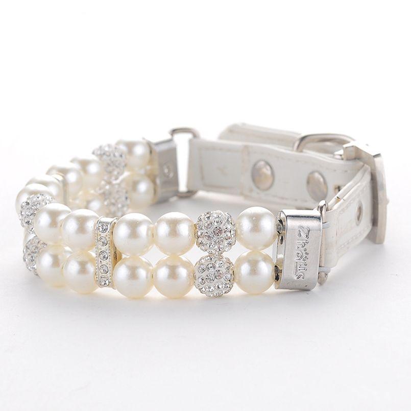 collier diamant pour chat
