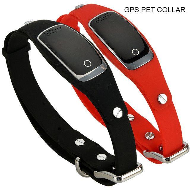 collier pour chien wifi