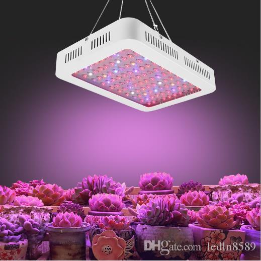 LED 강조 공장은 온실을위한 빛 1000W 전체 스펙트럼 채식 / 블룸 제어 램프를 성장, 온실 농업