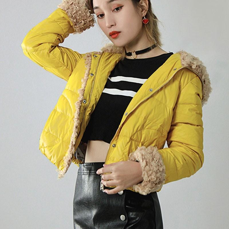 Inverno Breve luminoso a colori con cappuccio di base Down Jacket femminile 2019 New Light Moda e sottile cappotto grigio piuma dell'anatra Donne HJ131
