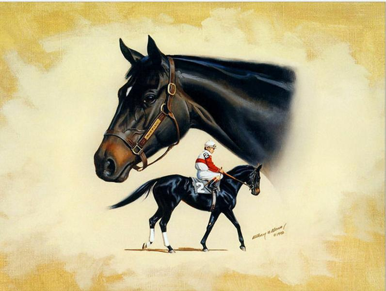 Thoroughbred Horse Puffin Ruffian Home Decor Handpainted &HD Print Oil Painting On Canvas Wall Art Canvas Pictures A239