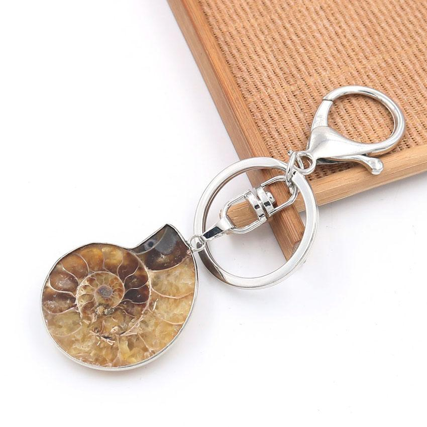 10 Pcs populaire SilverL plaqué forme irrégulière ammonite Reliquiae porte-clés pour Fashion Party Gift Jewelr