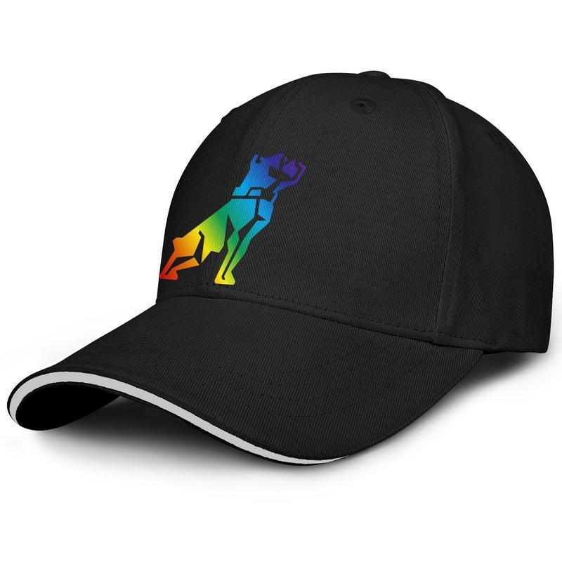 Unisex Mack Kamyon köpek amerikan Gey gurur gökkuşağı Moda Beyzbol Sandviç Şapka Blank Orijinal Kamyon sürücüsü Cap araba Logo Bulldog İşaret