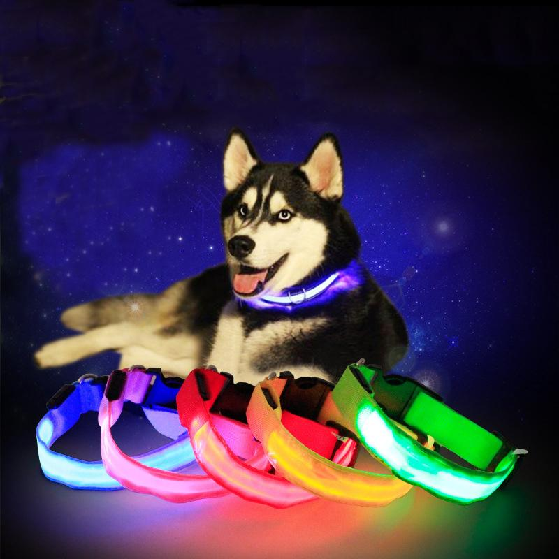 4 Colors LED Cat Dog Pet Colorful Light Flashing Safety Adjustable Collar Solid Color Led Reflective Dog Anti-Lost Collar DH0272 T03
