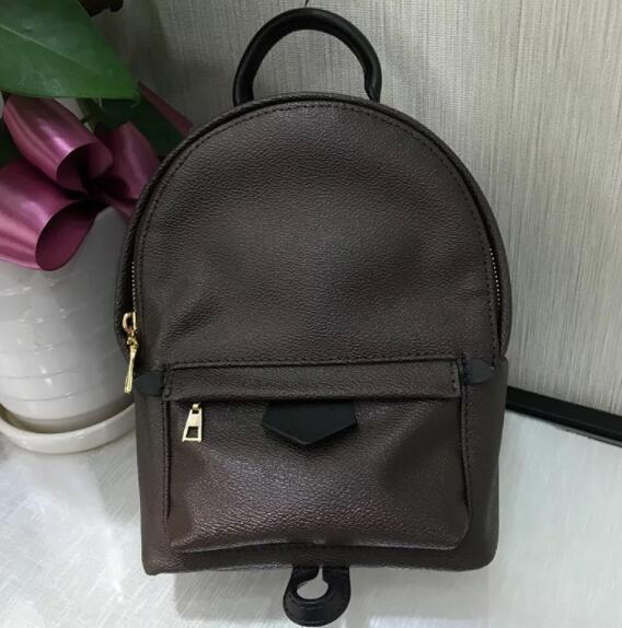 패션 유럽 정품 가죽 팜 스프링 여성 가방 유명 디자이너 핸드백 배낭 여성의 어깨 가방 체인 배낭