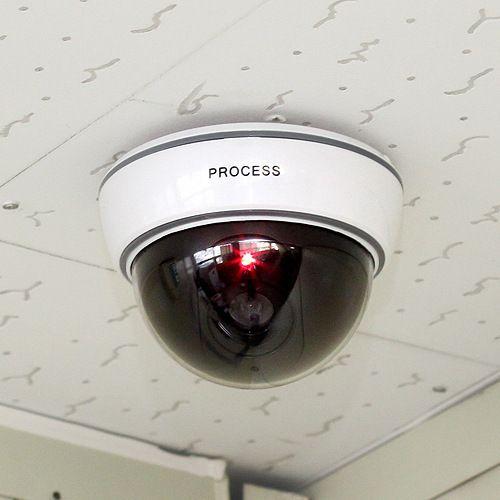 옥외 옥외 안전 보호를위한 LED 감지기 빛 Dummy Dome 가짜 사진기를 가진 감시 안전 사진기