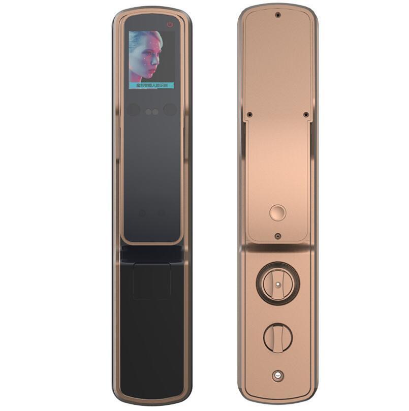 Nouvelle FX80 antivol intelligent de verrouillage de porte de reconnaissance faciale d'empreintes digitales verrouillage automatique du mot de passe d'or champagne Lock