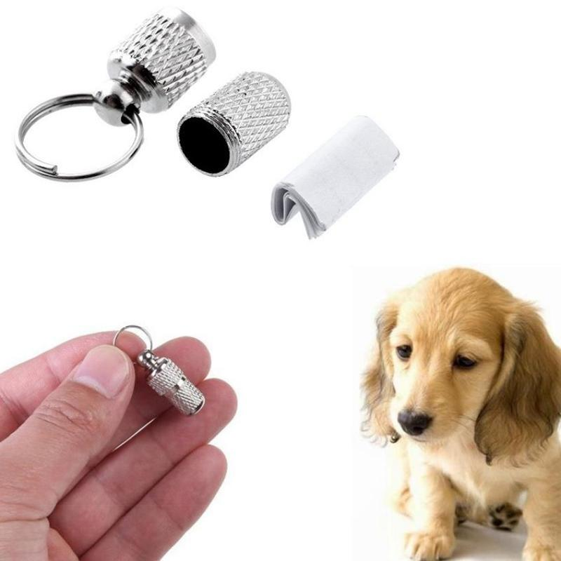 NEUE Haustier Hund Katze Adressetikett Fass Aufbewahrungsrohr Silber Ausweis Haustier Drop Shipping