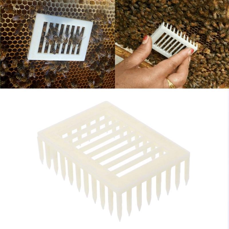 plástico marcador reina clip de jaula de abeja receptor apicultor apicultura herramienta equipamiento de productos agrícolas mascota suministros