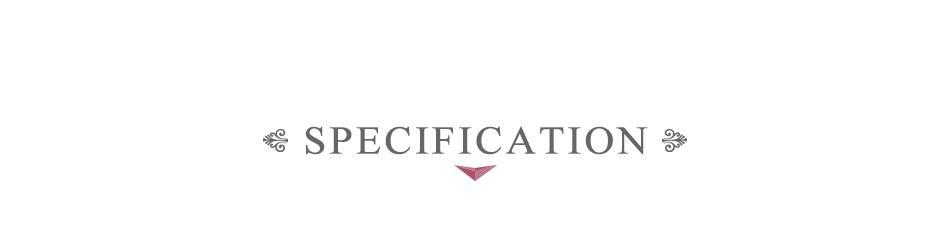 4 SPECIFICATION