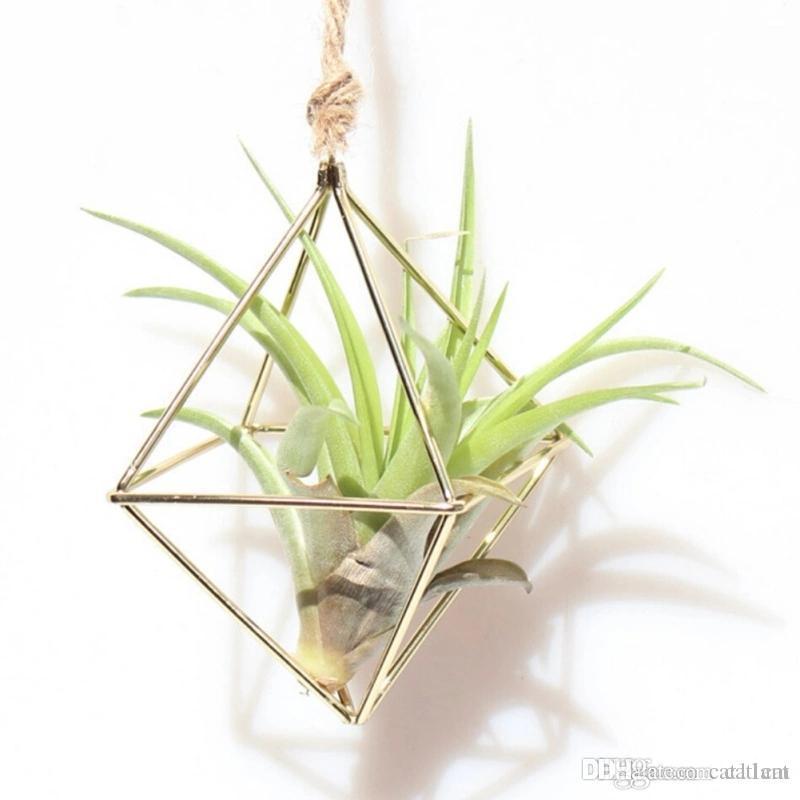 Hanging Tillandsia Air Plants Rack Metal Geometric Iron Art Flower Planter Pot Gardening Accessories Home Office Decoration