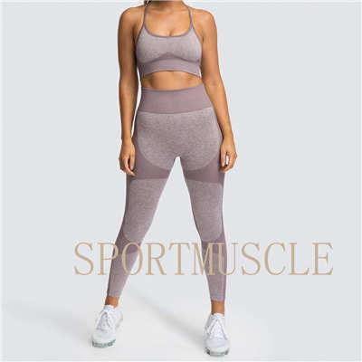 2020 Europe And The United States Sell Fast Dry Yoga Vest Set Professional Sports Running Seamless Fitness Bra Set Female