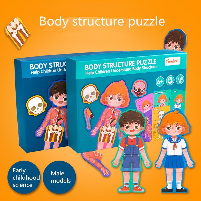 1Set corpo Struttura Cognition puzzle giocattoli Montessori materiali educativi giocattoli in legno per bambini Biologia sussidi didattici giocattolo