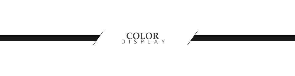Color DIS