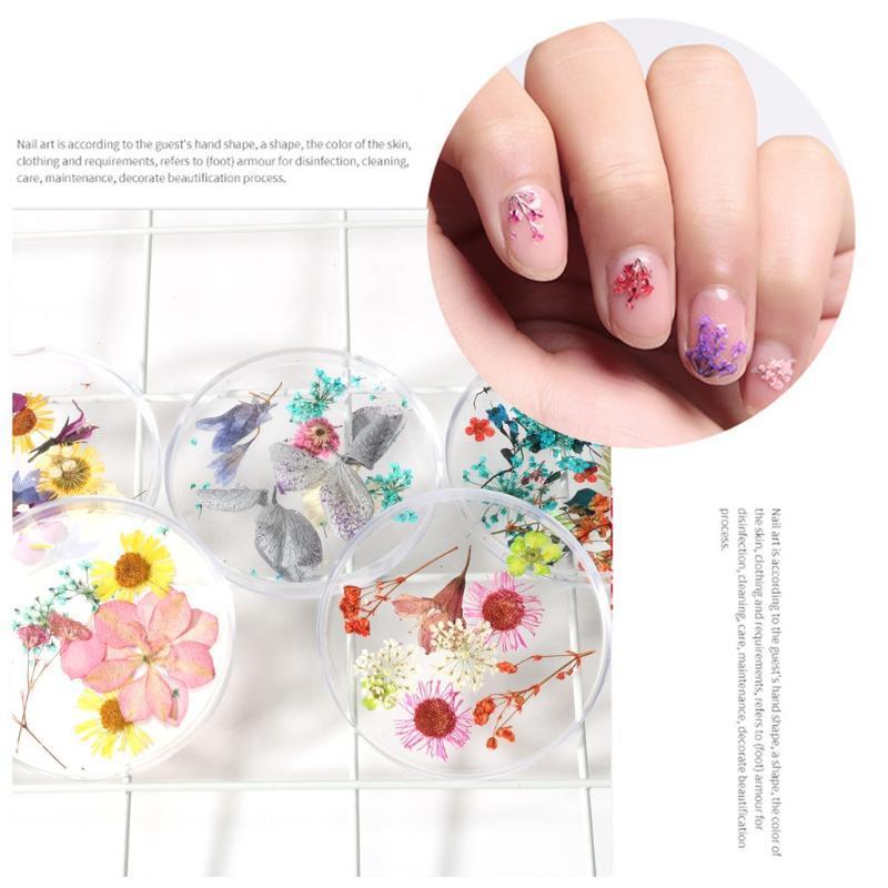3d clavo hermoso arte de la flor de la decoración mixta flores secas Nail Art botella de bricolaje manicura inclina la decoración floral de la hoja seco mezclado