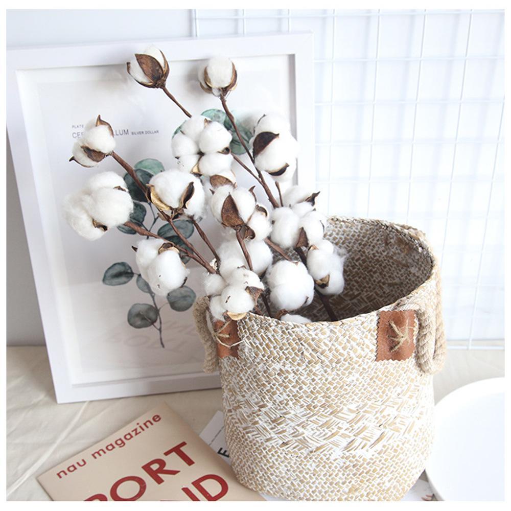 Branche Fleur De Coton acheter naturellement artificiel séché fleur de coton plantes branche  florale pour soirée de mariage décoration intérieure fleurs faux accueil  chambre