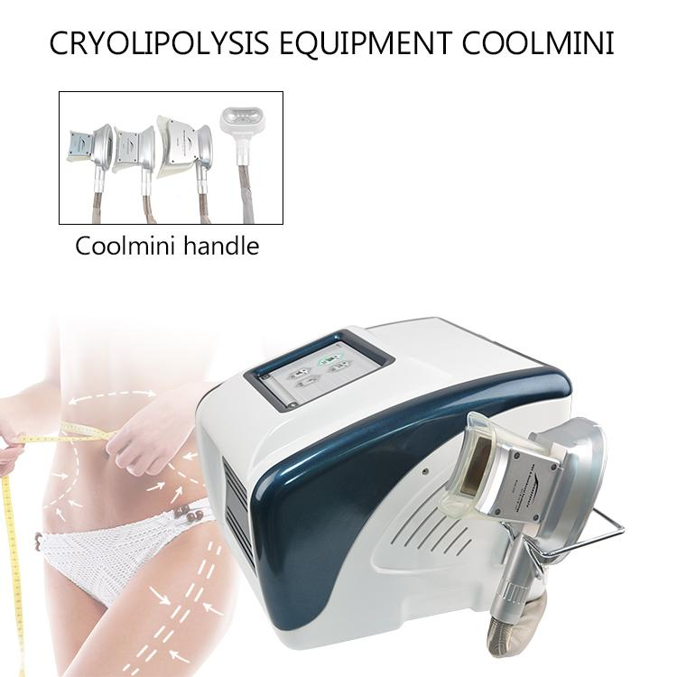 2020 New arrival Fat Freeze body slimming machine cool body slimming equipment with double chin treatment handle