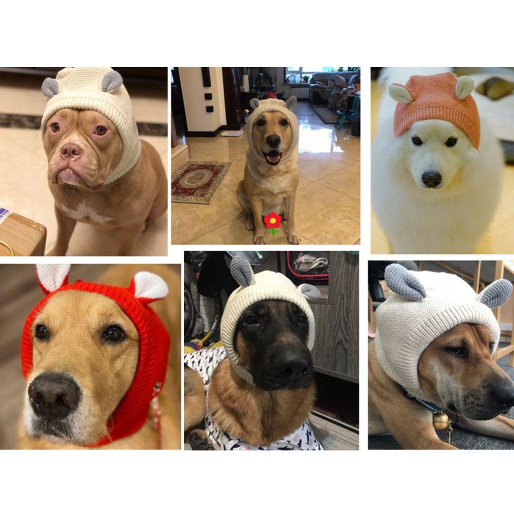 Chapéu morno malha 3pcs Lovely Dog Inverno Presentes Dog Headwear para os pequenos cães médios