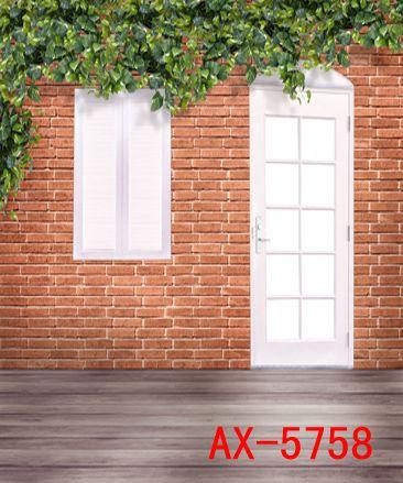 hotography Arka planında Özel Portre bez Dijital Baskılı Fotoğraf Dikmeler Fotoğraf Stüdyosu Arkaplan AX-5758