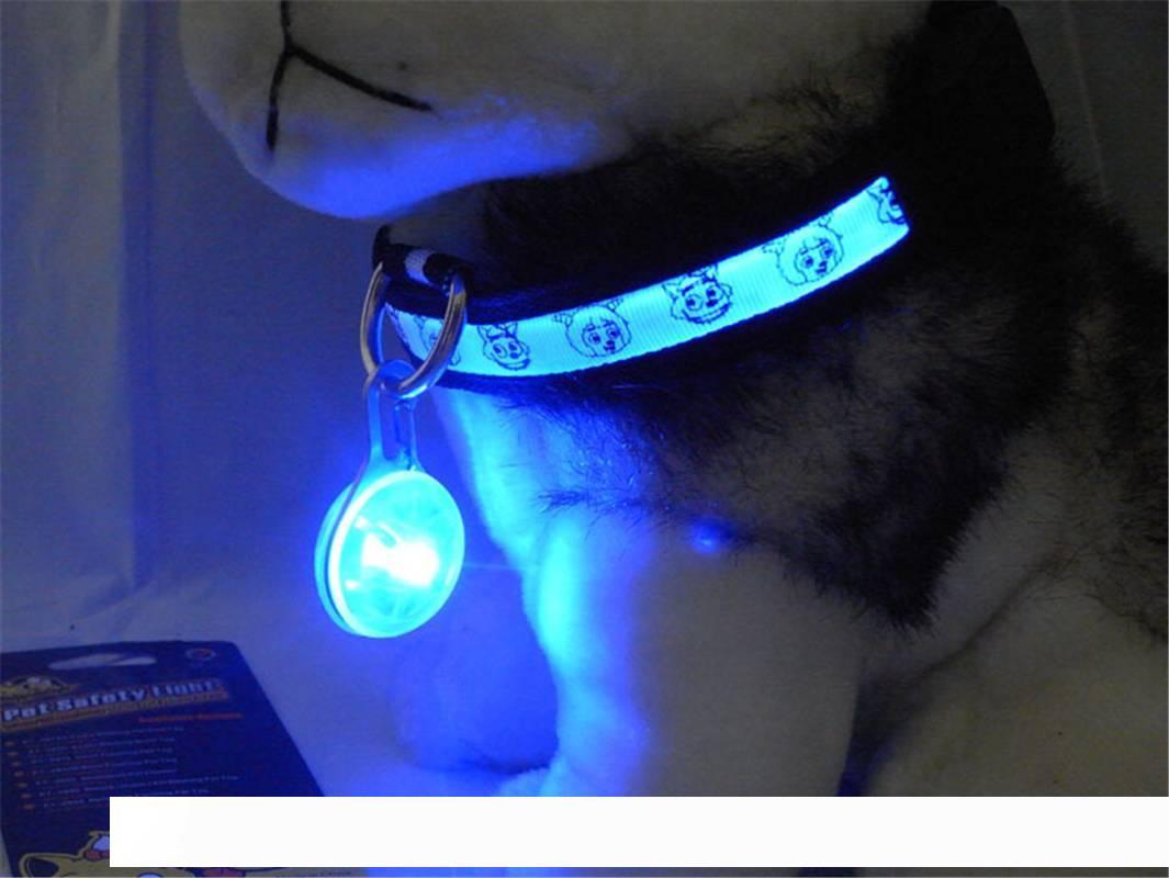 Dog Pet LED Night Safety Flash Light for Collar Push Button Switch Dog Light Up Blue Collar