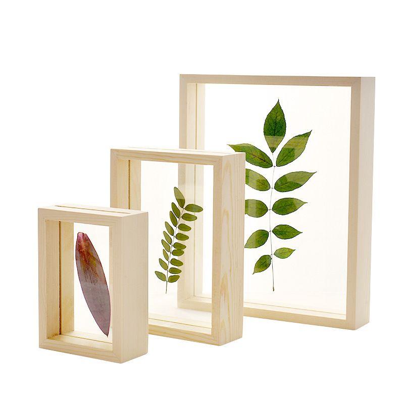 Original Holz, Glas, Blatt Schwimmrahmen Kreative Dekor-Rahmen für Bild Foto Blätter Blumen Botanische Insect Specimen 12 Größen