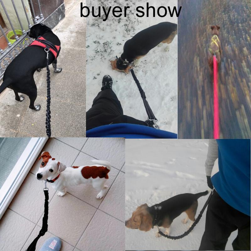 Çevre Dostu Pet Köpek Yansıtıcı Koşu Köpek yaka tasma ile Köpek Tasmalar İp Walking için Freely Yüksek, Kayışlar Hands Running