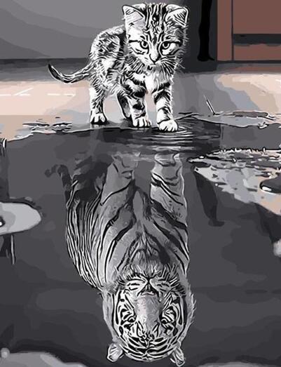 Reflexión del gato de tigre - Pintura por Números Kits Para adultos Draw de bricolaje en la lona para colorear por número de la decoración casera moderna de bricolaje pintura al óleo por números
