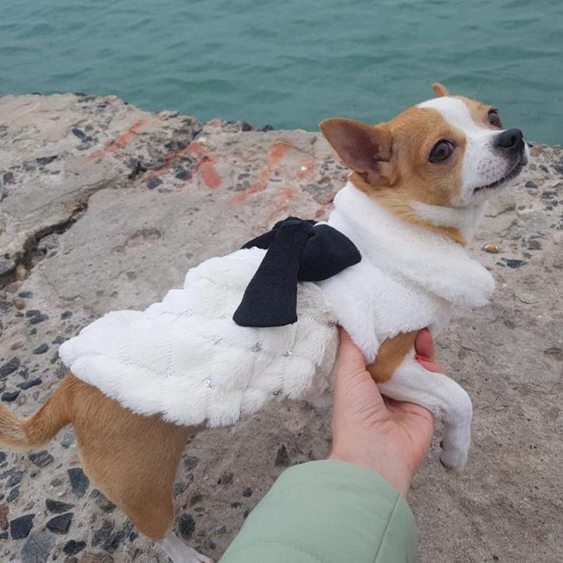 الملابس الحيوانات الأليفة فاخرة أنيقة الشتاء الفراء المعطف الصغيرة القطة الكلب الملابس BOWKNOT تشيهواهوا جرو الحيوانات الأليفة كلب زينة