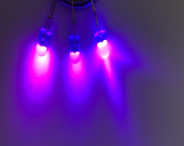 546 البنفسج LED الصمام الثنائي البنفسجي الخرز الضوء
