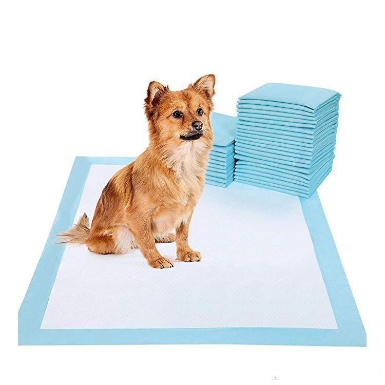 ABD Stok 100 ADET Süper Emici Pet Bezi Köpek Eğitim Pee Pedleri Tek Kullanımlık Sağlıklı Nappy Mat Köpek Kediler için