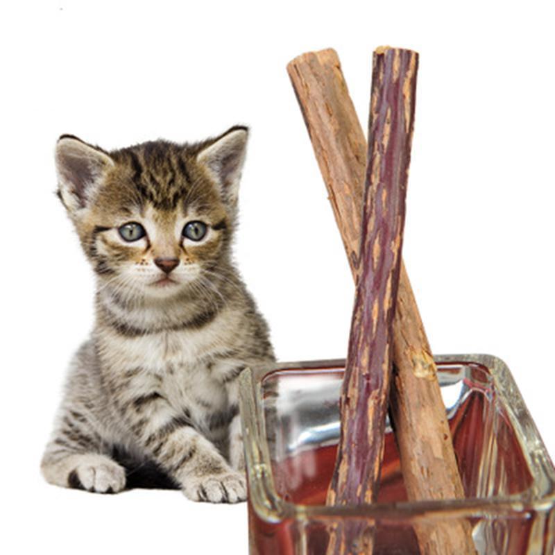 60 قطع القط تنظيف الأسنان الطبيعي النعناع البري القط معجون الأسنان عصا الماتابي الأكتينيديا الفاكهة silvervine القط وجبات خفيفة العصي لعبة