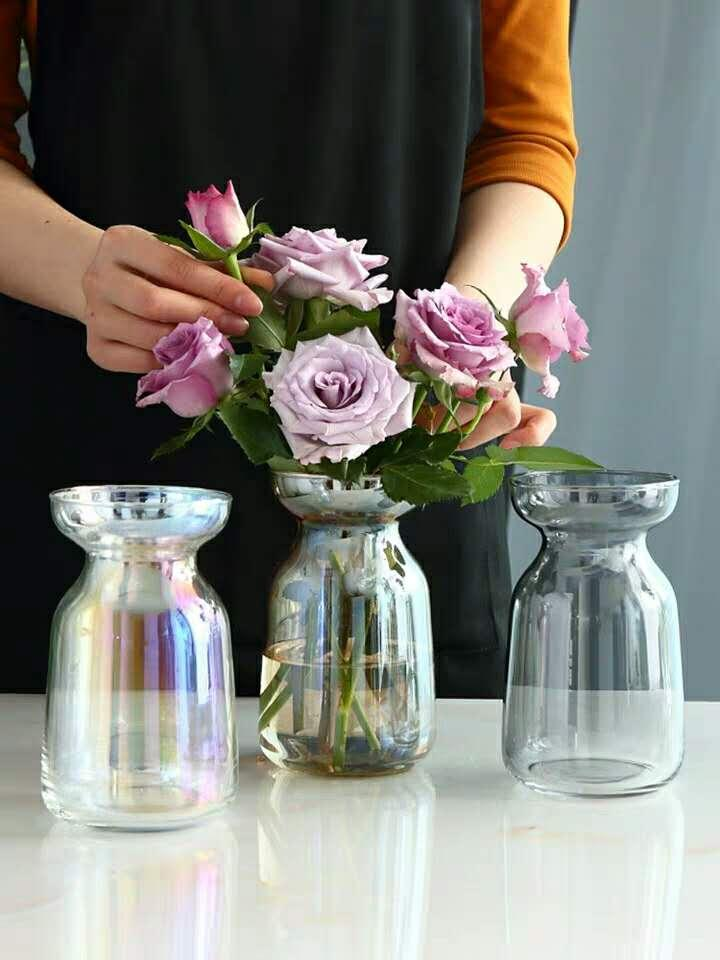 مزهرية أورورا بورياليس الزجاج التدريجي تغيير بسيط إناء صغير زهرة الزجاج مصنع ثقافة المياه ترتيب الطاولة اليابانية أعلى وسام
