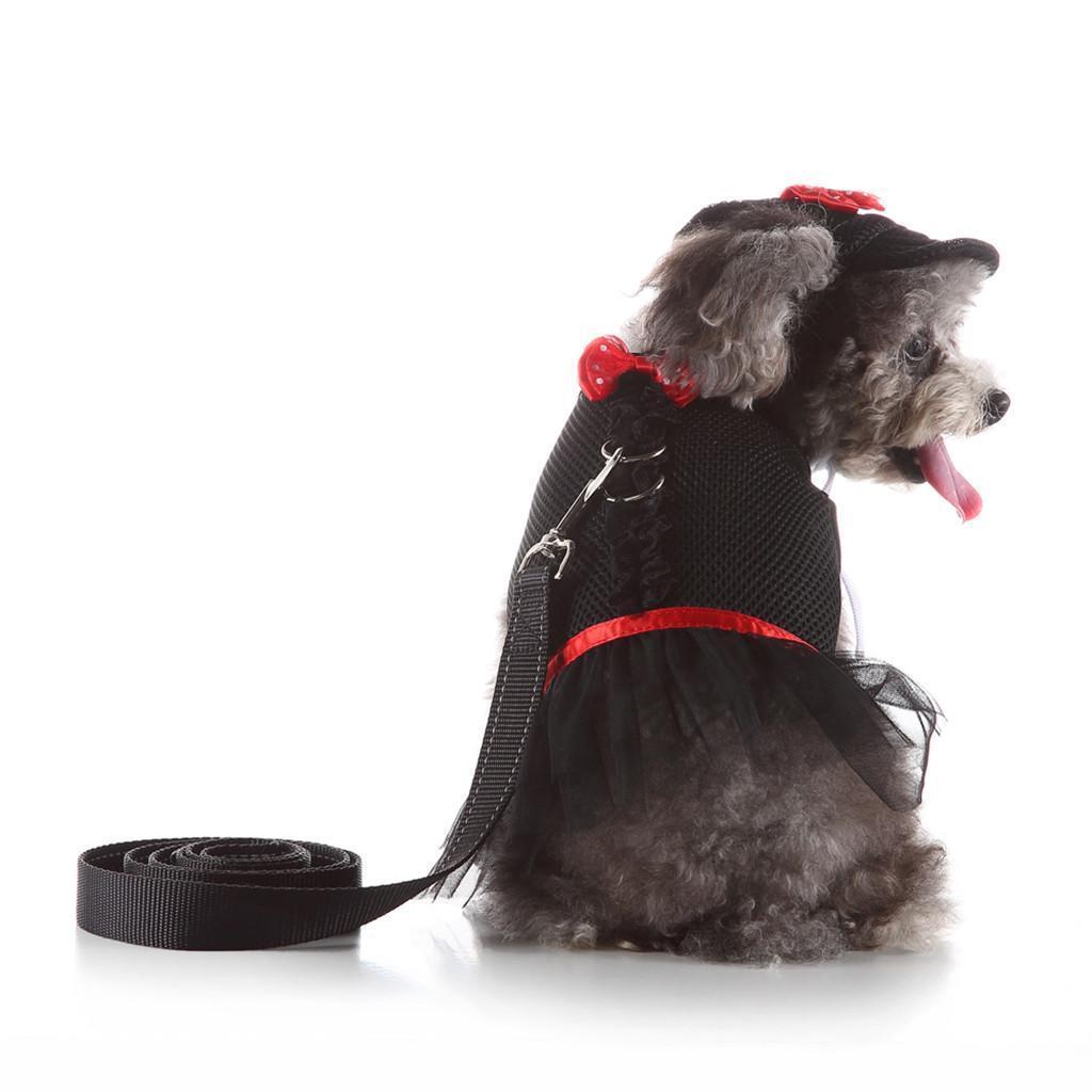 correa de perro doméstico del gato ajustable correa de perro pequeño flash larga transpirable arco vestido de encaje correa del pecho de tracción medio establecido L0716