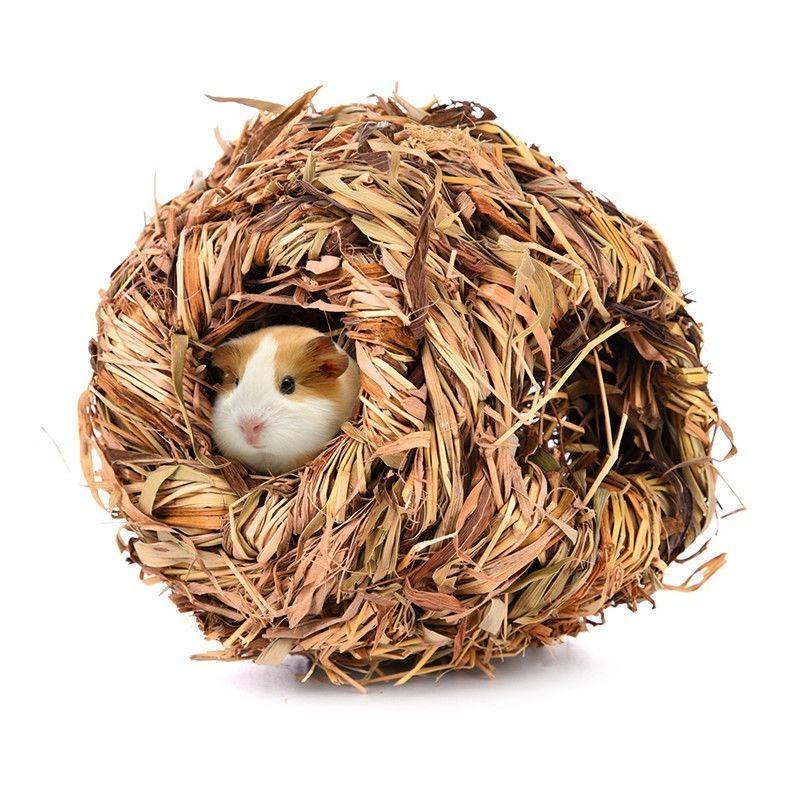 Shellhard Pet Grass House 자연 작은 애완 동물 스누즈 둥지 침대 캐빈 동굴 햄스터 기니피그 친칠라 겨울 따뜻한 케이지 새로운 D19011201