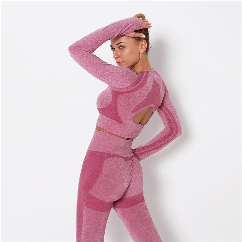 2020 Seamless Yoga Set Women Pink 2pcs Two Piece Sport Outfits Long Crop Top High wasit Leggings Workout Gym Suit Fitness Sets